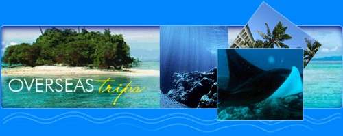 Overseas Diving Trips - Blue Water